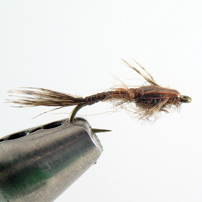 beginner guide to fishing with nymph