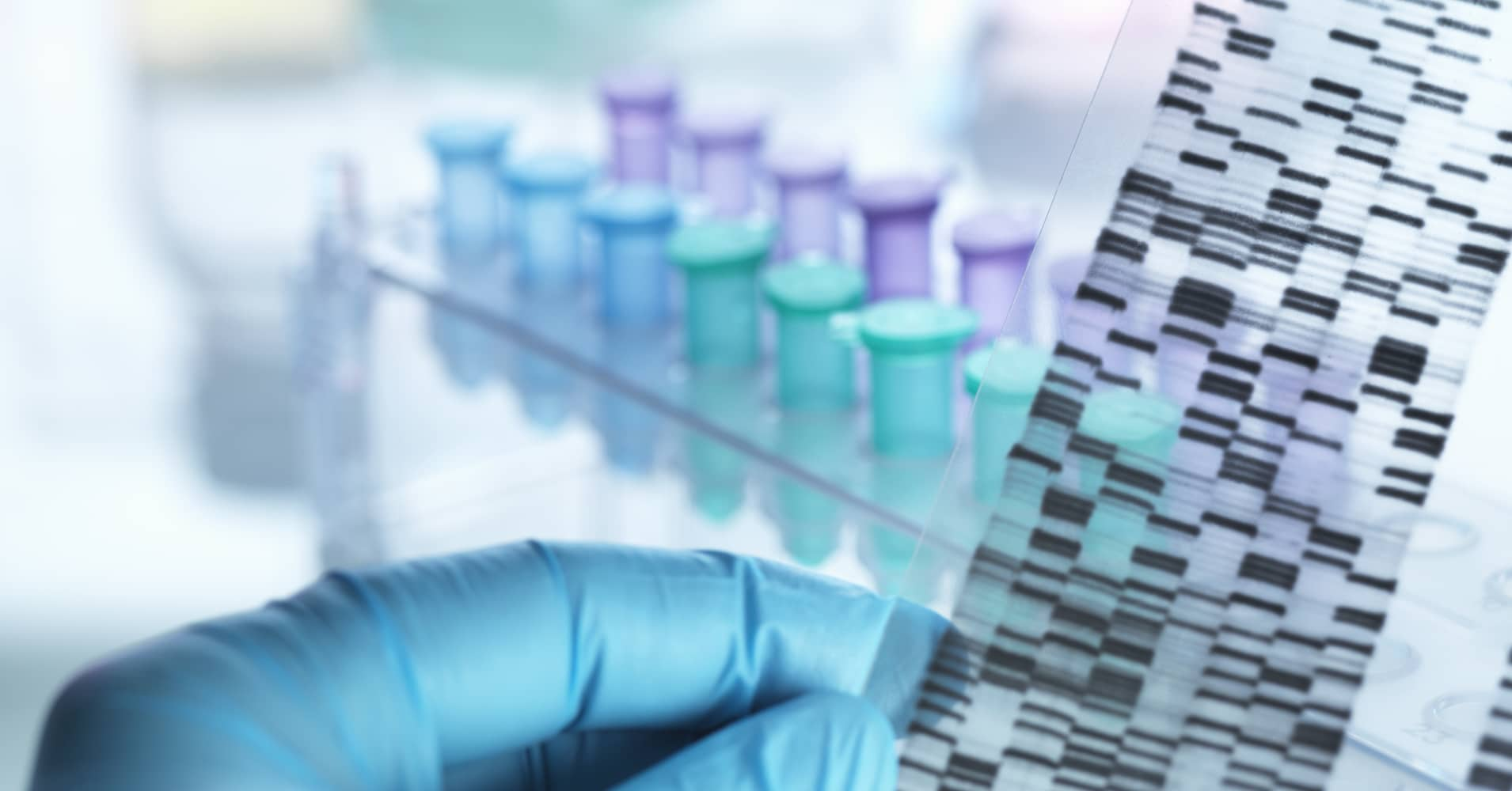 application anaylsing dna from consumer testing