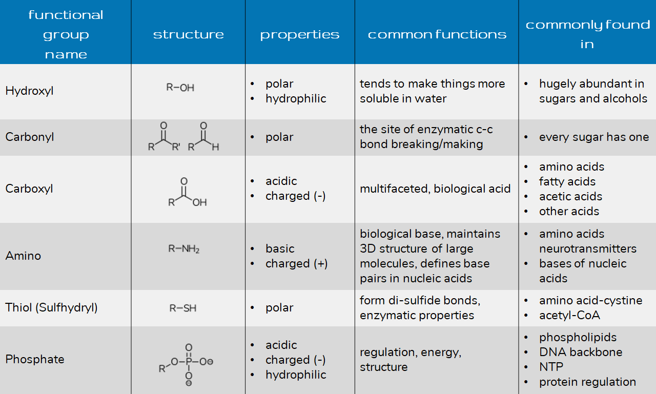 chem guide acid base reactions with water