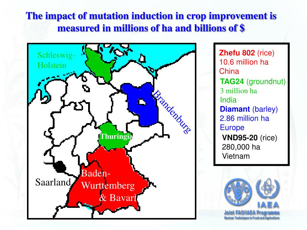 application of mutation breeding in crop improvement