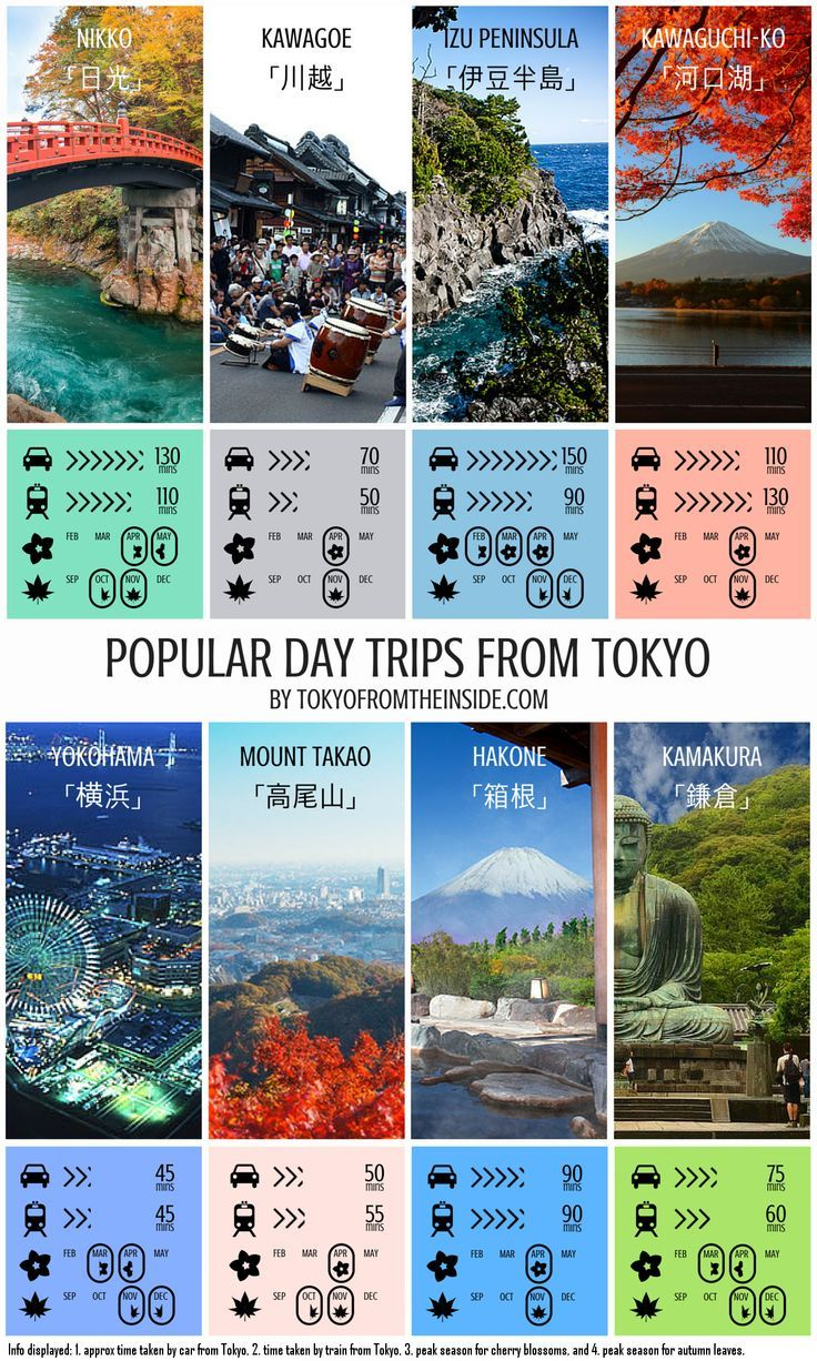 aussie guide to japan