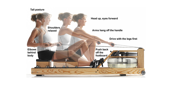 beginners guide to rowing