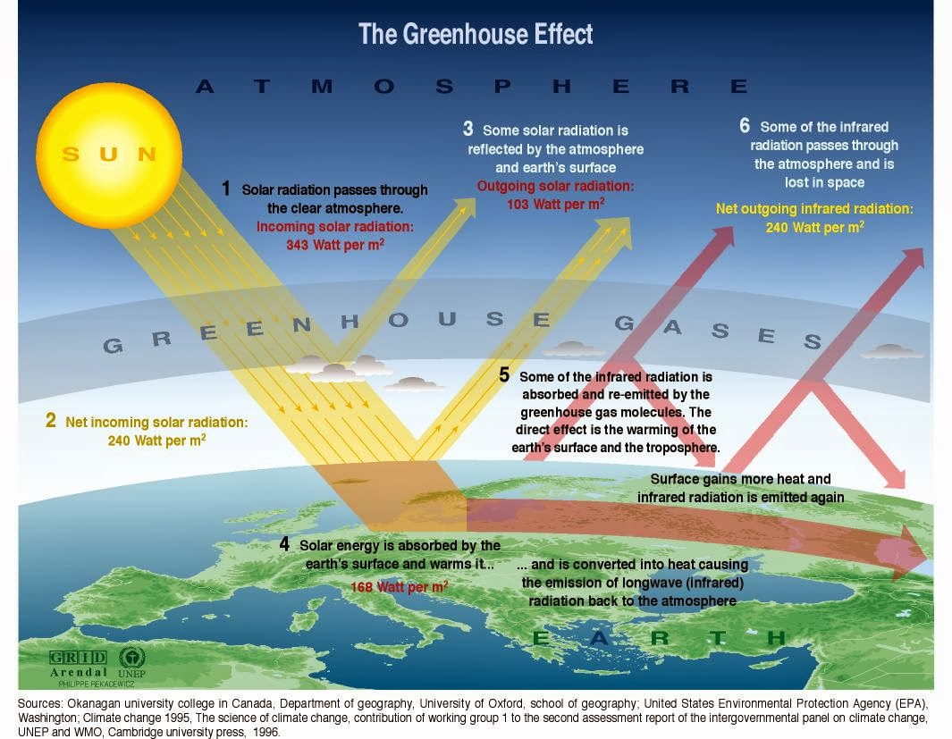 carbon dioxide effects on humans and environment pdf