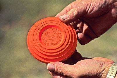 dictionary clay pigeons