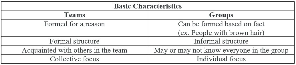 difference between group and team pdf
